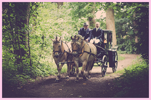 Horse Drawn Carriage €300